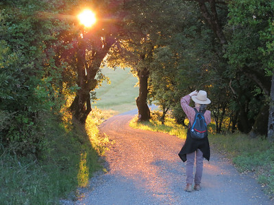 Karin snapping photos of some nice lighting.