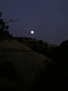 Behind us, the full moon rises over Black Mountain, Venus a brilliant spot just a hand's width away. (Can't really see it here.)