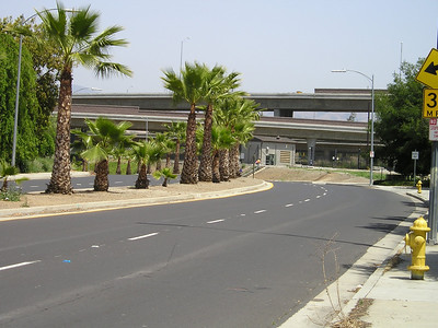 You know that you're in California: Palm trees plus freeway overpasses.