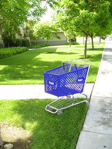 Well, what do ya know, down the street there's just another shopping cart. This must be shopping-cart city. Who leaves these things here? There are no doors, no parking lots, no hidey holes for homeless. Why here? Why now?