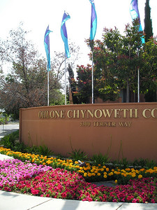 I like the juxtaposition (good word, note to self, use more) of the Indian name (Ohlone) with the good English name Chynoweth. Cross-cultural flower beds are good. Plus I like the flags because they are my Favorite Colors.