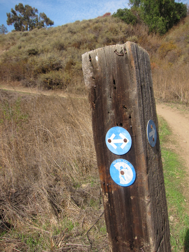 Some of what we did was along the Bay Area Ridge Trail.