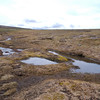 Two of the many Wells of Dee - a group of springs clustered at around 1230 metres
