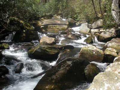Matthews Creek along the Naturaland Trust Trail.