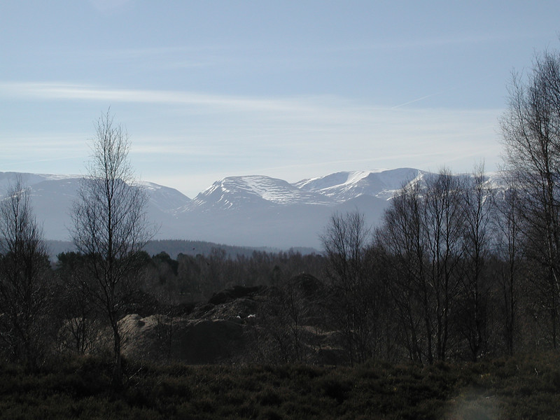 Cairngorm massif from near Loch Morlich