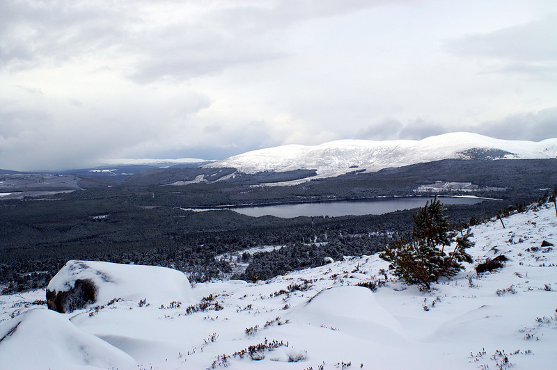 Looking north over Loch Morlich from the mouth of Eag a Chait