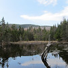 View of the Firescrew Mountain's north ridge from Beaver Pond.