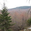 View of Firescrew Mountain from the first view ledge on Ellwell Trail.