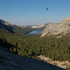 Lake Tenaya, and a bird in flight.
