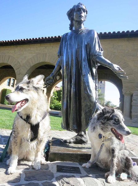 Boost and Dig are not impressed by the sacrifices of the Burghers of Calais, even though they are Rodin sculptures!