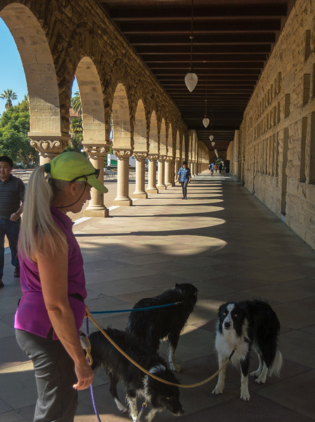 Karey with Bump, Dig, and Styx in the colonnade.