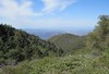 Looking South into North San Diego County from the Magee-Palomar Trail.