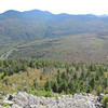 The logging road on the right snakes around and connects with logging road on the left.  The logging roads are more like a swaths rather than a roads.  Forest to right and left of logging road on right is very young hardwood forest.  Birch glades comprising north slope of Whitewall Mt is on extreme right with Carrigain Notch peaks poking up over Whitewall.