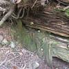 Close up shot of plank sheathing on upstream side of crib work.