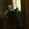 Dirk gets eaten by a redwood