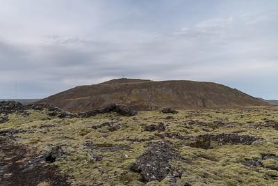 Þorbjörn