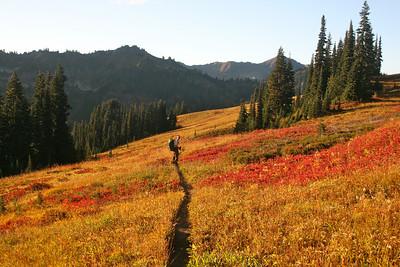 Beautiful fall color.