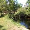 Firestone park the  bridge in summer