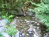 Shattuck Brook