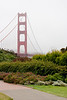 Looking north