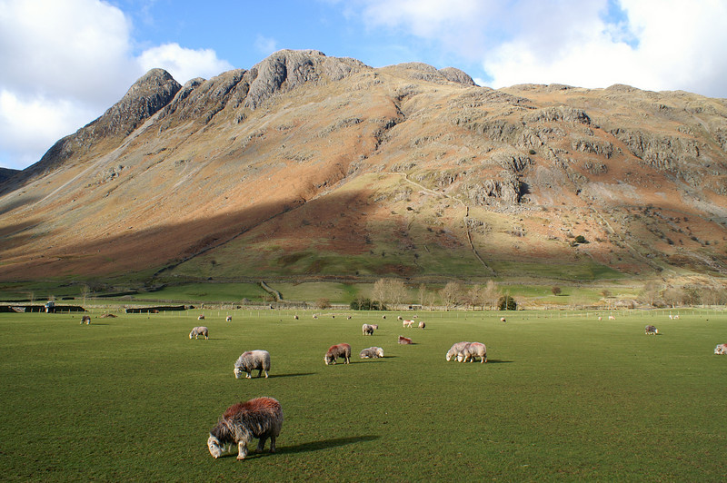 The Langdale Fell from the valley floor.
