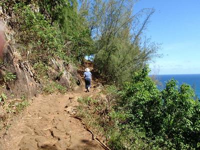Hanakapi'ai beach and falls