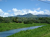 Hanalei River