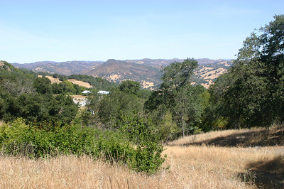 Looking back at the visitor center from the hillside.