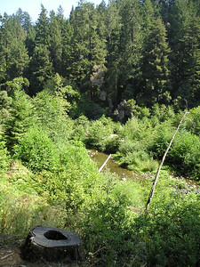 And here we are, back down at the San Lorenzo River, 120 feet above sea level, descending from a peak of about 640' above us.