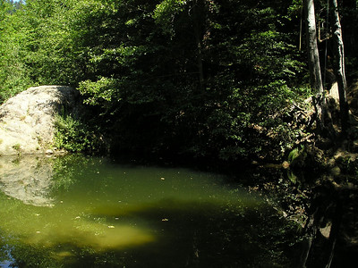 Crossing the river took us to Big Rock Hole. Here's the big rock and the hole, plenty deep enough for swimming if you're inclined. A rope hangs from the trees on the right side.