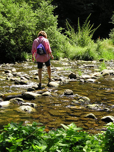 We weren't going to cross the river; didn't want to get our feet wet. But we kept eyeballing the natural line of stones across in front of us, and finally we sent out a victi... er, volunteer to try it out.