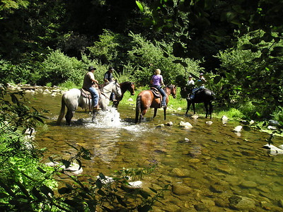 A group on horseback passed us twice on the trails--they were going in the same direction both times. Go figure.