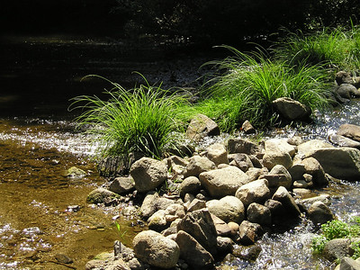 A side rivulet on the river.