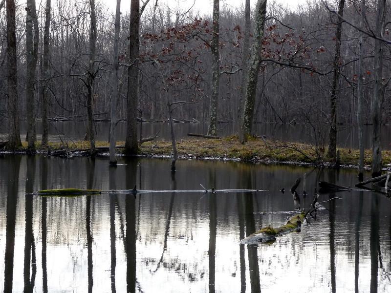 Spane Pond