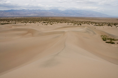 Death Valley May 08
