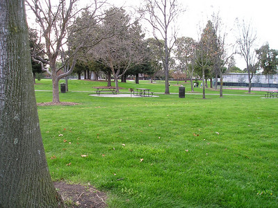 I'm always looking for broad expanses of grass that we could commandeer for agility trials, and our starting location--through Whisman Park--had lots of grass...but not exactly suitable for agility, unless you wanted to try some EXtreme Agility (think EXtreme Croquet).