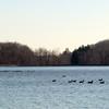 Franklin_Lakes-06a 2-6-12