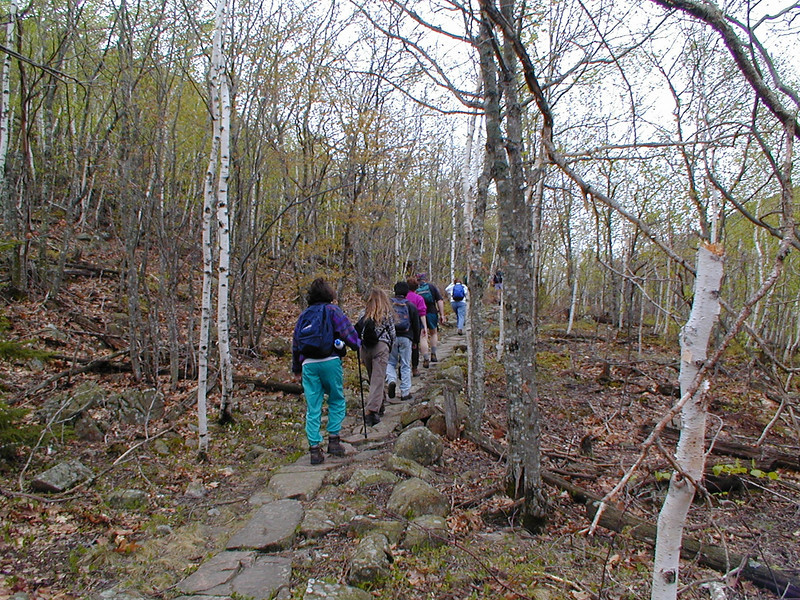 "Beachcroft Path<br /> <a href=""http://www.mainetrailfinder.com/Trail/acadia-national-park-beachcroft-and-champlain-south-ridge-route/"">http://www.mainetrailfinder.com/Trail/acadia-national-park-beachcroft-and-champlain-south-ridge-route/</a>"