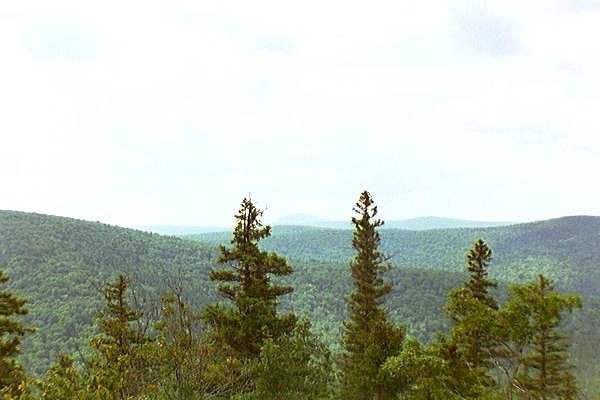 Brunt Mountain, Baxter Park Hike 1997