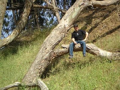 Manresa CA (2008)