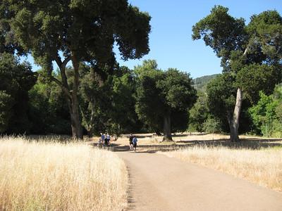 Palo Alto CA (2009)