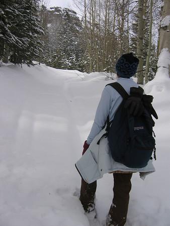 Hope Valley Jan 2008