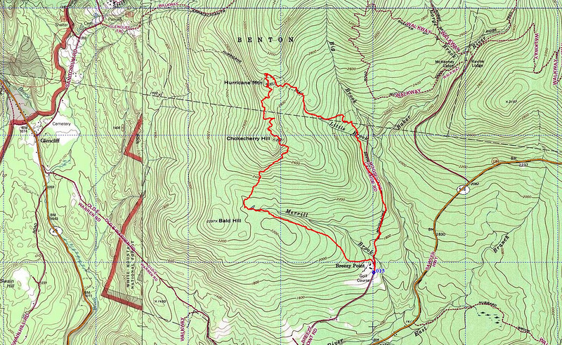 Area around summit of Hurricane is thick spruce with patches of deadfall.  I offset down by saddle and hit nice open birch-spruce forest. Ridge approaching Chokecherry had very open birch hobble woods.   I turned east to bypass Chokecherry Hill.  Big mistake. It was steep and sprucy with much deadfall.  I should turned west and followed the spine of the curving ridge all the way to Bald Hill.  I bet that would have been nicer.