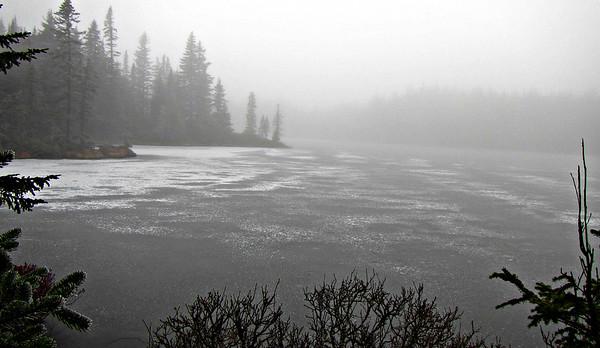 Unknown Pond Loop (November 28)