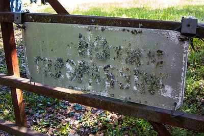 Lichen apparently liched the paint that used to be on this sign!