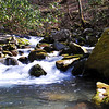 a very nice creekside place you will enjoy on Kephart Prong