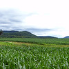 Schoharie Valley from Rte 31