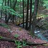 Pleasant Valley Stream