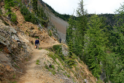 Pretty larch trail.