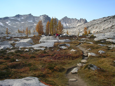 This is what it looks like in the Upper Enchantments!